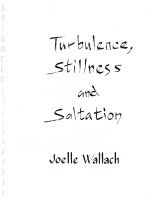 Turbulence Stillness  & Saltation scanned score001