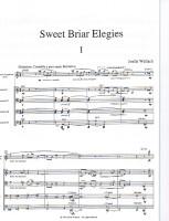 S&Cello score001
