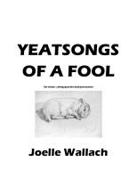 Yeats Songs of a Fool-Total Chamber001